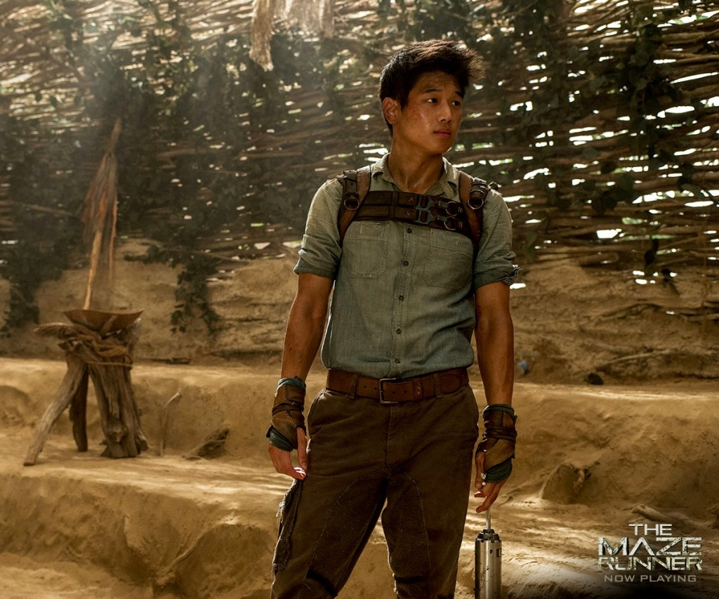Minho-the-maze-runner-37615138-1200-1000.png