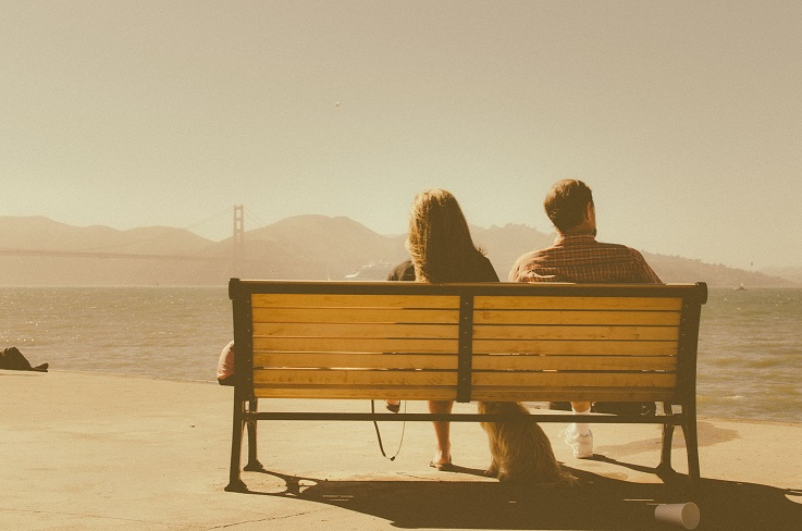 animal_bay_bench_bridge_california_couple_dog_golden_597275